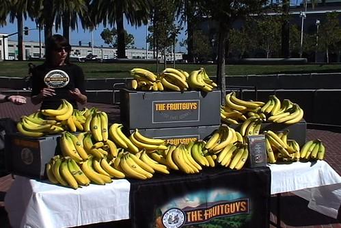 FruitGuys give away bananas