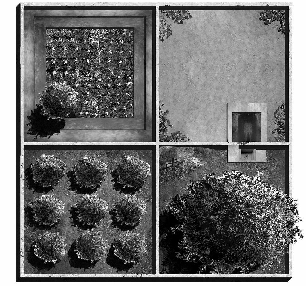 The Four Gardens
