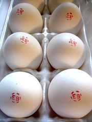 Monogrammed Eggs