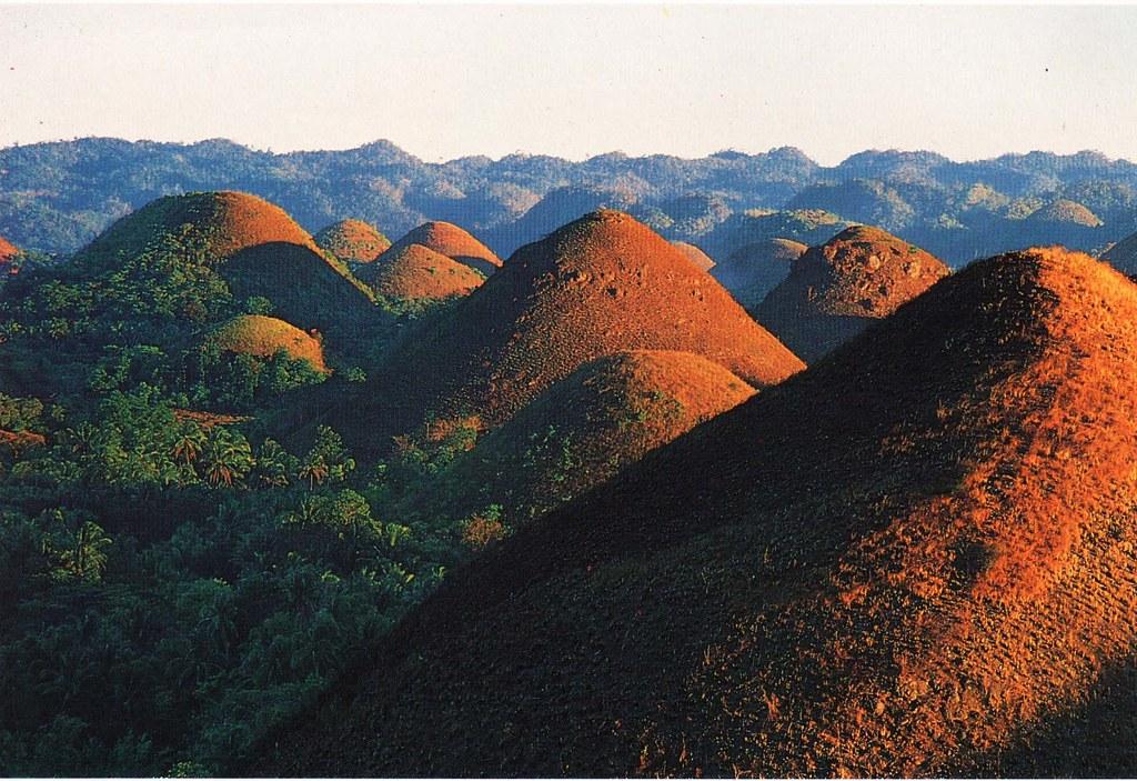 チョコレートヒルズのアップの風景