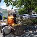 Small photo of Cachoeira DonkeyBoy