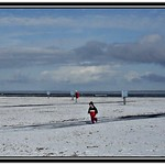 germany northsea frisia: winter.snow.third.day.(049.02)