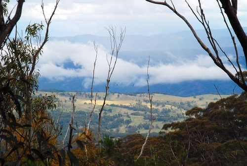 Looking Across the Blue Mountains