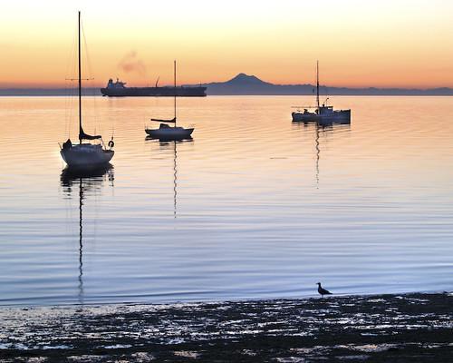 82 Westwind Dr Port Angeles Wa Usa Sunrise Sunset Times