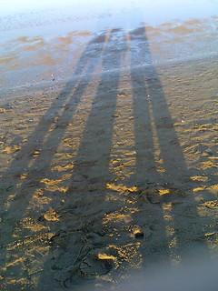 תמונה של Bagno Marconi 20. beach shadows