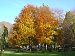 Lugano, parco Ciani