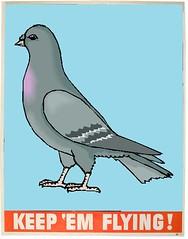Taiwan Busts Racing Pigeon Kidnapping Ring