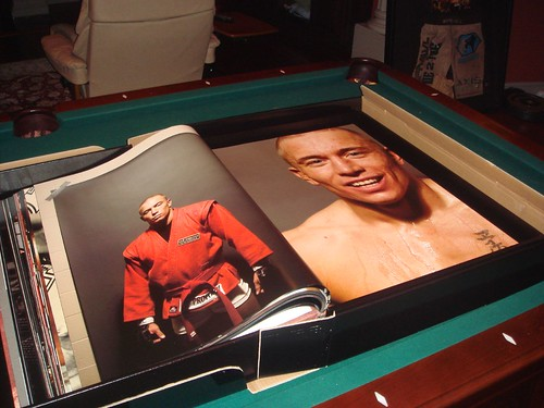 GSP in the Octagon Book
