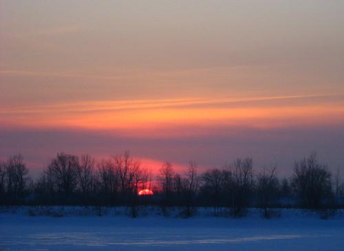 winter sunset snow canada tree ice hiver brossard explore québec neige 2008 arbre southshore glace montérégie coucherdusoleil rivesud denysebéchard img0442mf