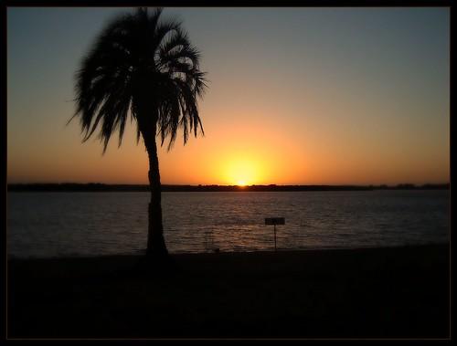 costa beach argentina sunrise playa palmeras amanecer entrerios horizonte ♪ colón mywinners theperfectphotographer