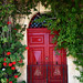 Red door by Sysy *