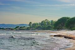 Corse Palombaggia près de Porto-Vecchio 247 sur la plage