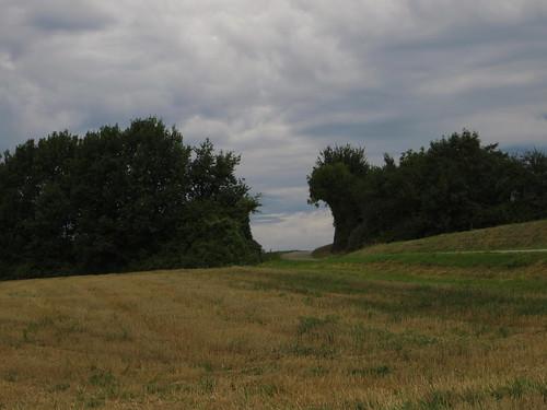20130819 11 016 Jakobus Bäume Feld Wolken