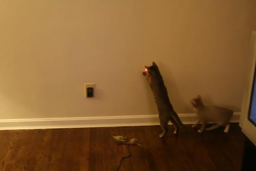 pixel laser