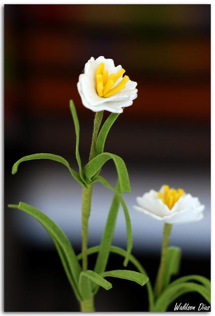 Flores de pl stico e espuma flickr photo sharing - Flores de plastico ...