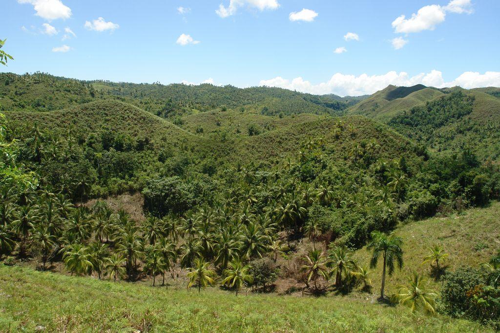 Montañas de Samaná Samaná, una península en el Paraíso - 2526692883 90c49b33a2 o - Samaná, una península en el Paraíso
