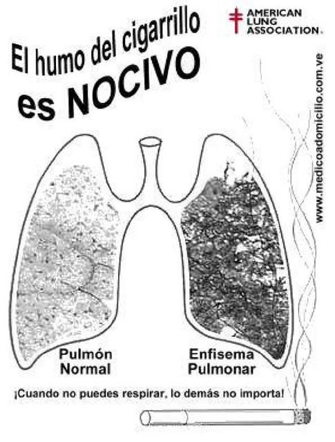 Dejar fumar por el ciclo