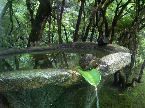 法然院 湧き水
