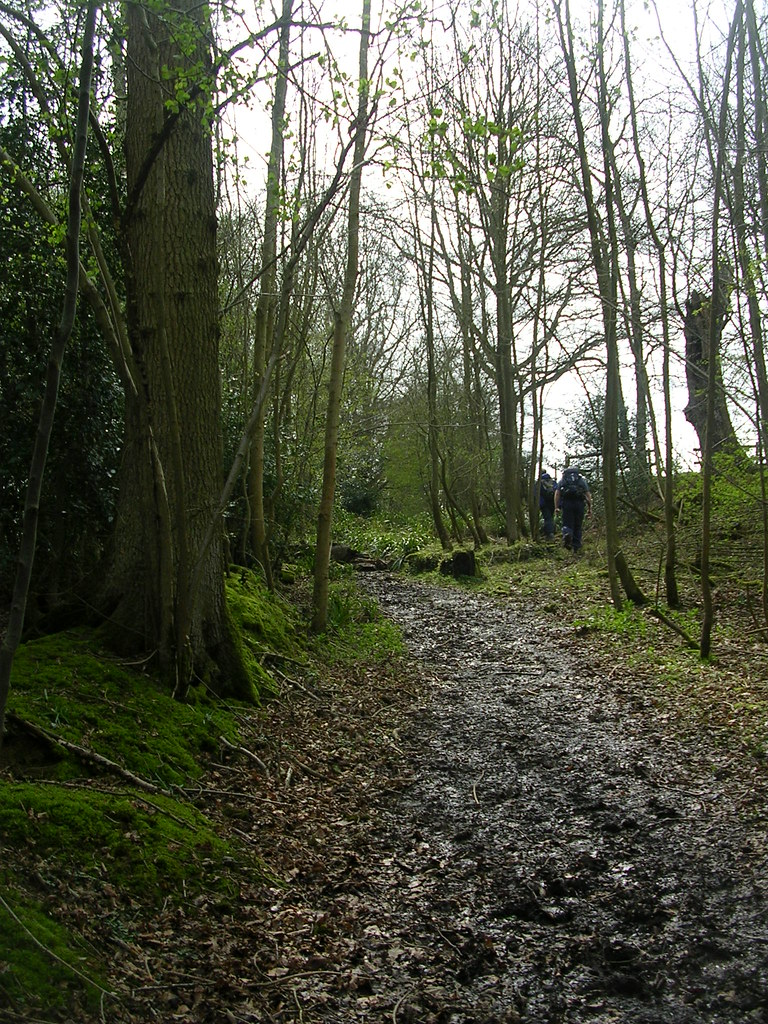 Mud - theme for the day 2 Ockley to Warnham