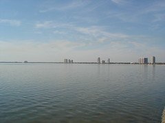 Distant Bayshore Blvd