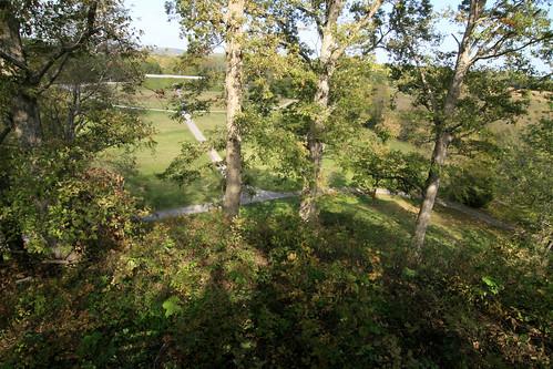 Atop Pinson Mound. Middle Woodland Period.  Pinson, TN