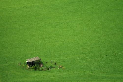 house green garden landscape switzerland heaven suisse vert gruyeres vaud romandie
