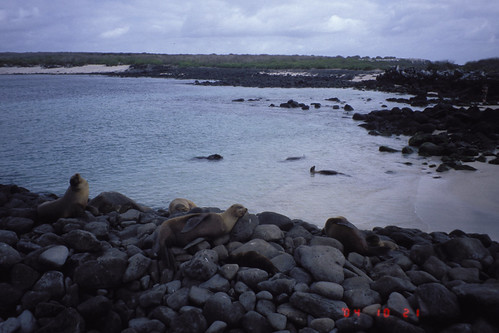 ecuadorgalapagos2004