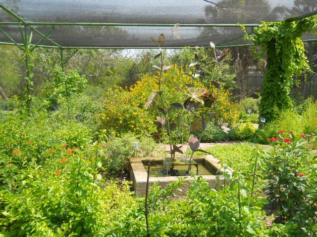 South Texas Botanical Gardens Nature Center Corpus Christi Tripomatic