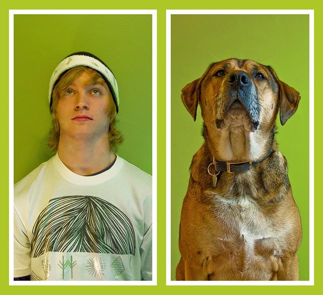 Image Result For All Dog Go