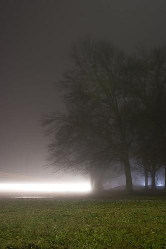 trees light grass silhouette fog night canon dark landscape rebel longshutter canonefs1855mmf3556 xti 400d