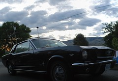 automobile, automotive exterior, wheel, vehicle, automotive design, first generation ford mustang, ford, land vehicle, luxury vehicle, muscle car, sports car,