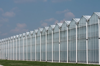 build your own greenhouse plans