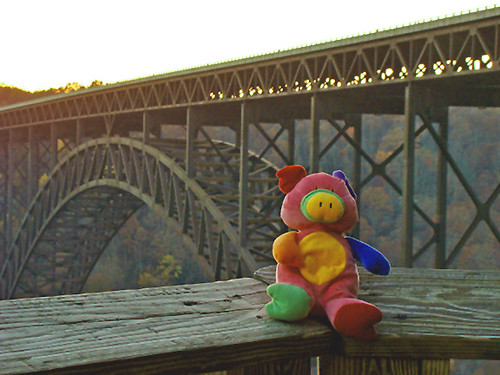 Piggy at New River Gorge Bridge---Happy Birthday Meagan!!!