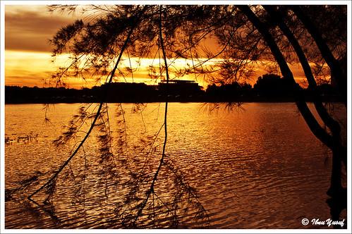 sunset lake sundown gorgeous malaysia a200 selangor shahalam endoftheday section7 sonydslr abigfave flickrgold ultimateshot diamondclassphotographer citrit ibnuyusuf goldstaraward mysonia teperfectphotographer