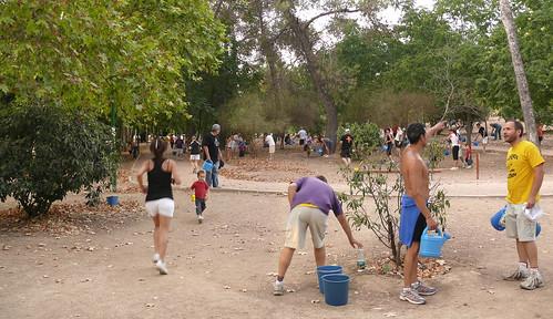 Circuito Parque Cruz Conde Cordoba : Supersticiones ayuntamiento arboricida vecinos solidarios