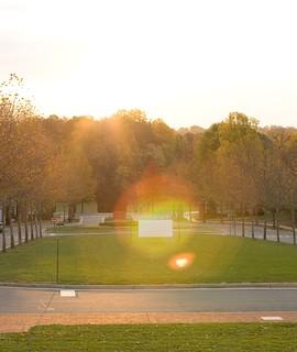 Sunrise over Darden