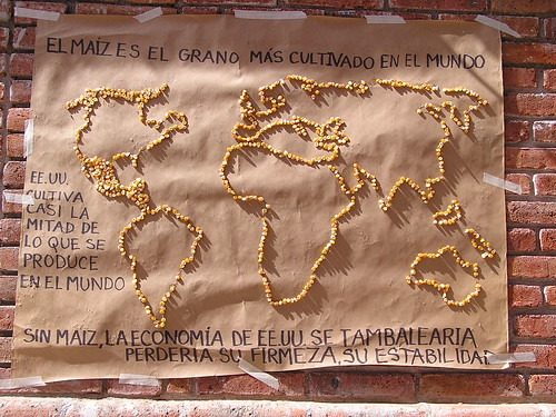 map of the world outlined in corn @ Oaxaca 12.2007
