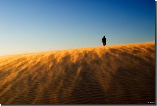 africa travel vacation sahara 1025fav algeria sand nikon bravo desert wind dune viento arena desierto d200 duna blueribbonwinner flickrsbest anawesomeshot danico superbmasterpiece flickrdiamond megashot theunforgettablepictures adoublefave thegardenofzen danicophoto