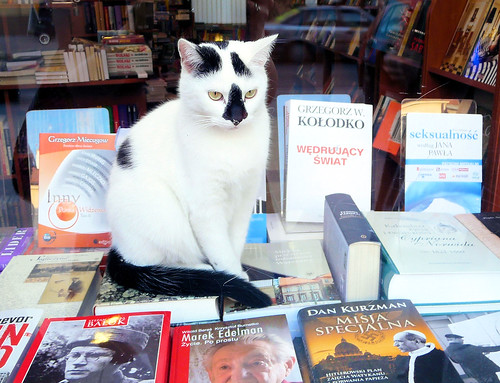 Bookshop Kitty