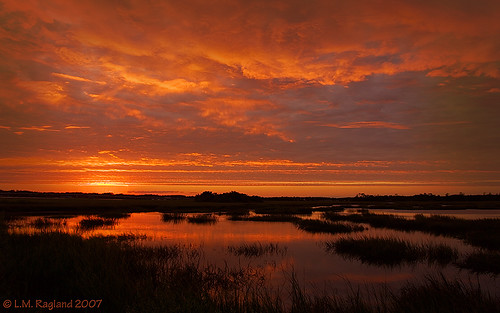 sunset red orange reflection pool grass marsh tidal surnrise