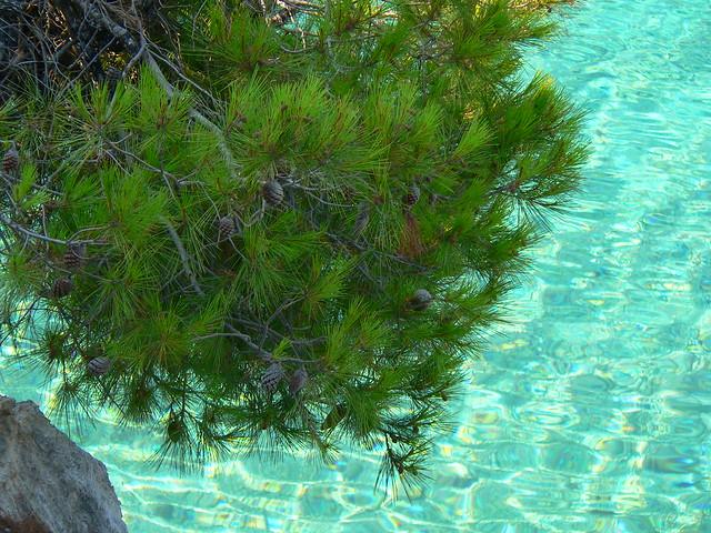 Crystal seas of Skopelos por Craigaio