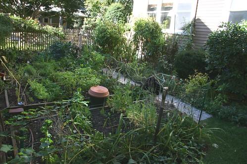 Skippy 39 S Vegetable Garden Shady Garden