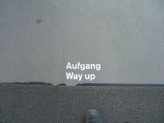 asphalt(0.0), wall(0.0), road surface(0.0), flooring(0.0), floor(1.0), line(1.0), grey(1.0),