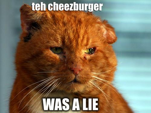 cheezburger was a lie