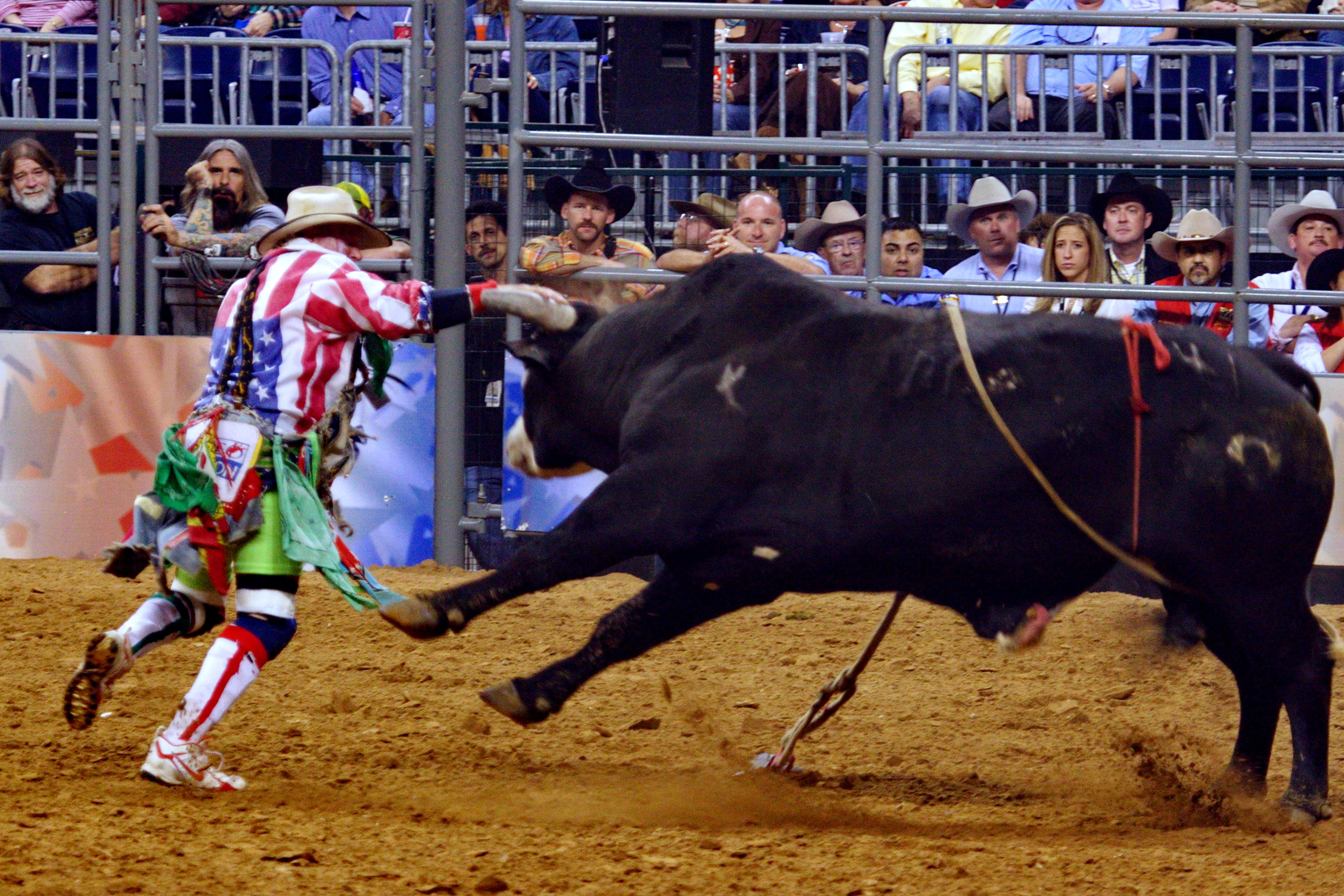 Rodeo Bull fighter