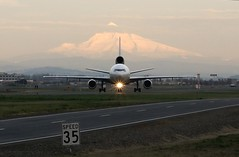 airline, aviation, airliner, airplane, wing, vehicle, air travel, infrastructure, tarmac, runway, takeoff, jet aircraft,