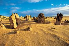 Aussie Wanderer Adventure Day Tours