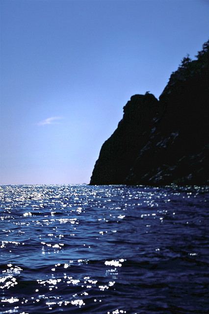 Effingham Island Coastline