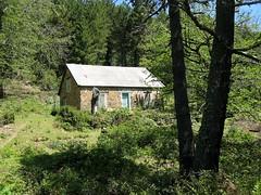 La maison forestière de Lumiu en montant à Bocca d'Astenicat
