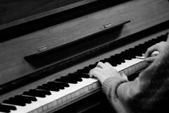 musician, pianist, piano, musical keyboard, keyboard, jazz pianist, monochrome photography, monochrome, black-and-white, black, electronic instrument,